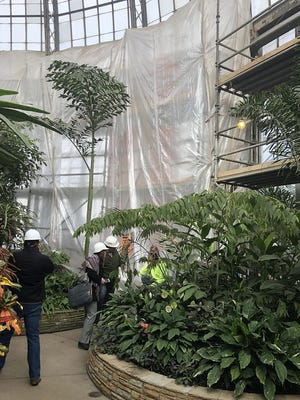 The Anna Scripps Whitcomb Conservatory on Detroit's Belle Isle remains closed for renovation work.