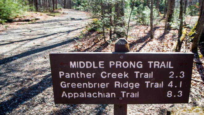 Middle Prong Trail in the Great Smoky Mountains National Park.