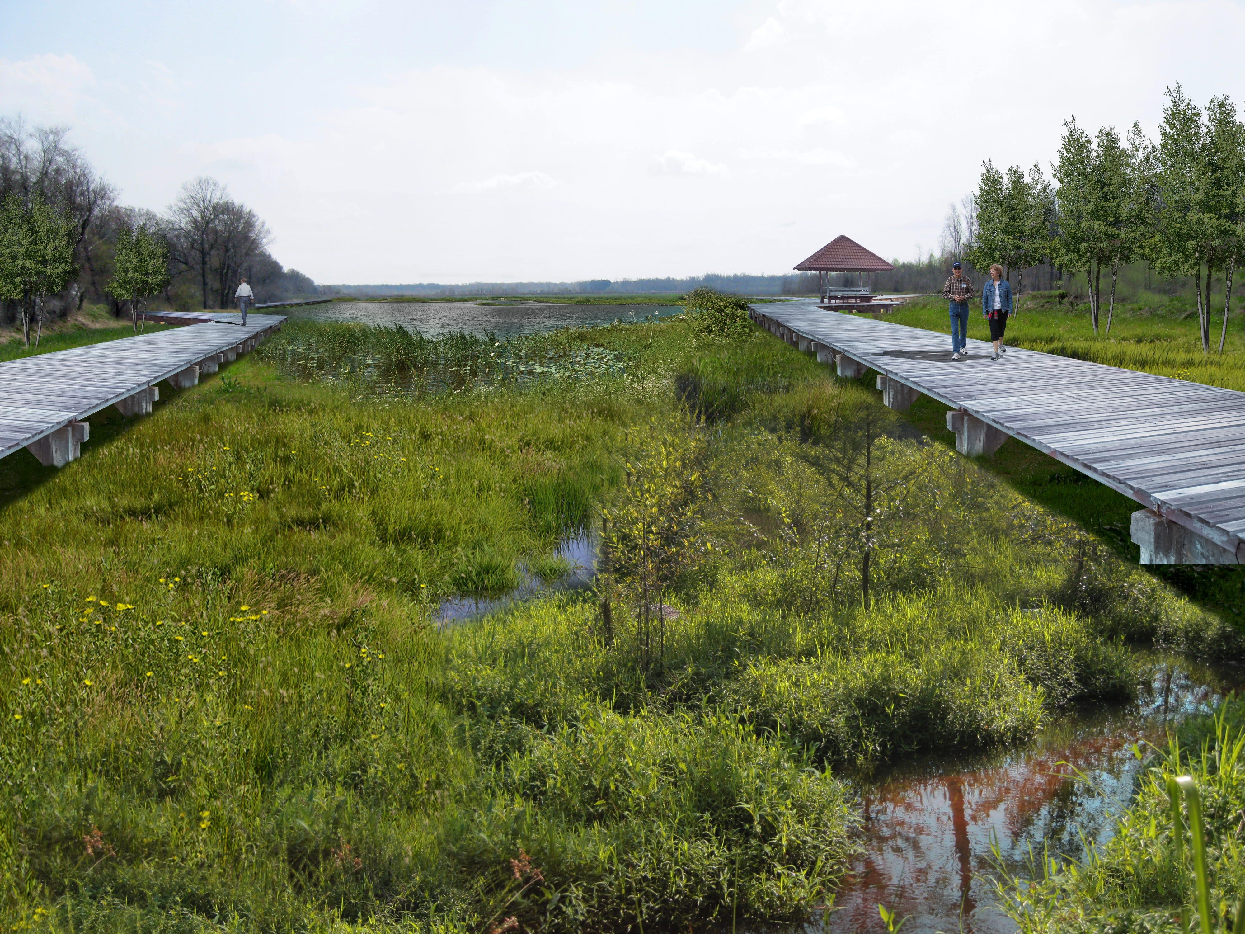 Riverside square wetlands