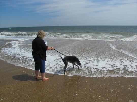 Carolyn Wagner of York, Pennsylvania, takes her greyhound, Karma, in for a dip in Dewey Beach Saturday, April 11.