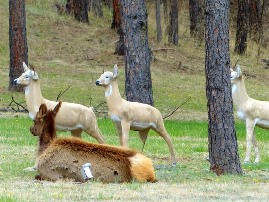 elk hanging-out-with-rock-solid-friends.JPG