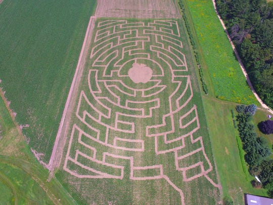 Activities like a corn maze add interest to small family farms.