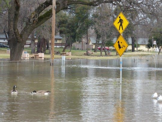 A portion of Park Marina Drive was flooded Monday morning.