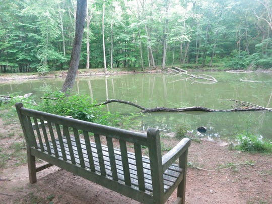The small pond with a bench along the Grand Loop Trail.