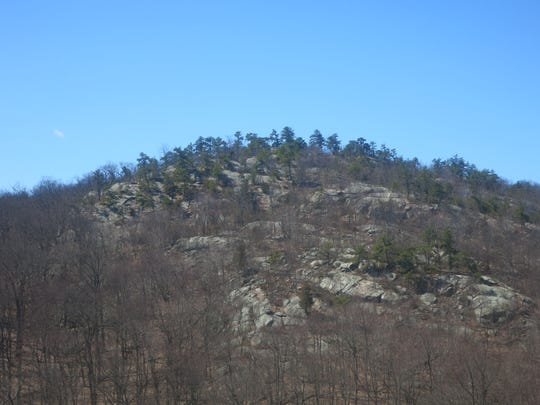 The view of the pine-studded rocky peak from the Hewitt-Butler Trail.