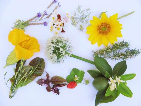 636304562621227439-Edible-Flowers.jpg
