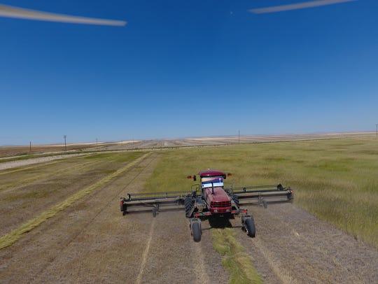 Conservation Reserve Program fields on the Bendel farm
