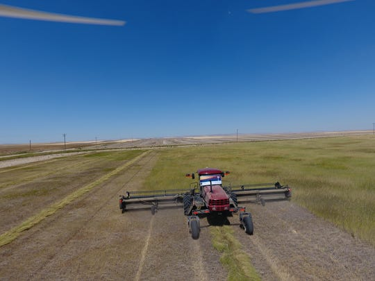 Conservation Reserve Program fields on the Bendel farm near Carter are harvested to provide hay to fire stricken ranches in eastern Montana