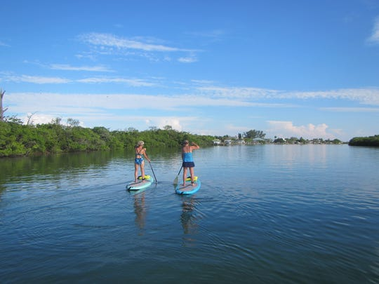 Join an eco-tours led by Hooked on SUP to get up close to dolphins and other denizens of the deep that make their home on Lemon Bay.