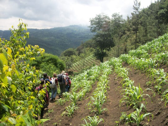 Eliana Pritchett, a Poudre High School senior, took this photo on her trip to Guatemala last year. She spent time alongside farmers and helped plant trees.