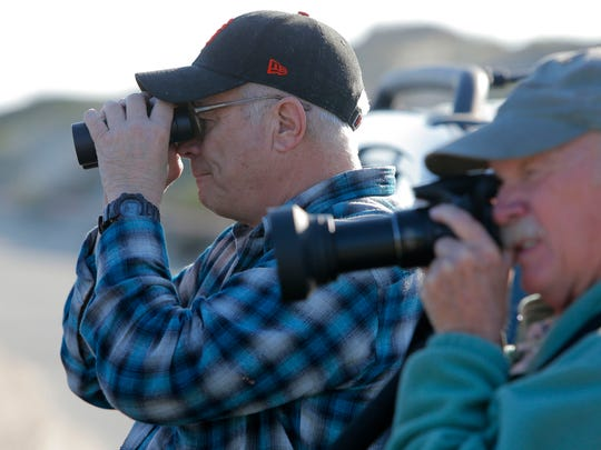 Jim Steuckert of San Francisco bird watches Tuesday in Moss Landing. Steuckert graduated from Monterey High School and was in town visiting.