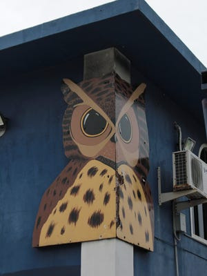 The Wise Owl Animal Hospital owl as seen on the side of the hospital building in Tamuning on Aug. 15.