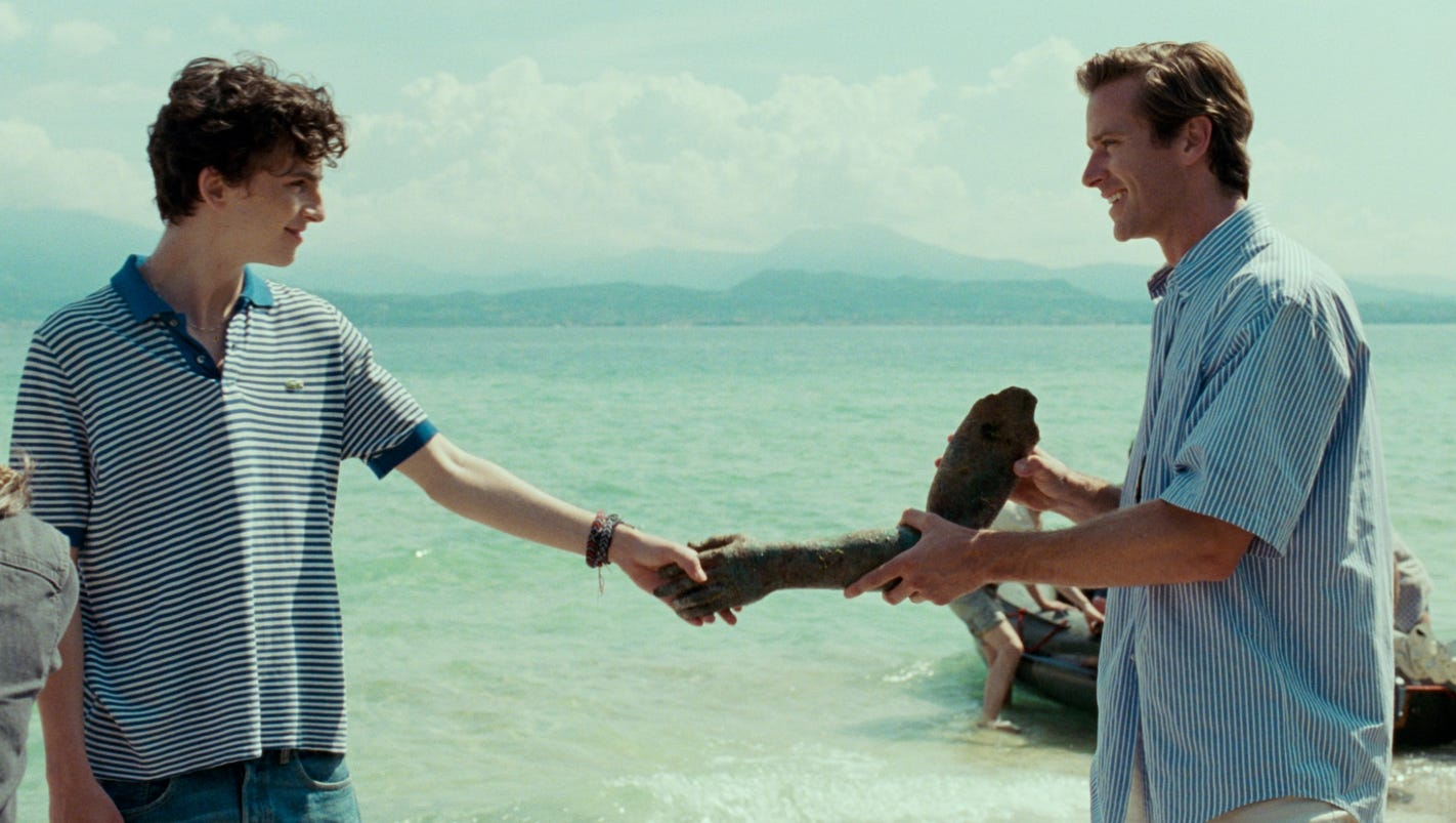 'Call Me by Your Name' director Luca Guadagnino confirms film's sequel, details plot