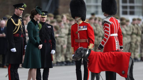 Kate meets the Guards' mascot, an Irish wolfhound.