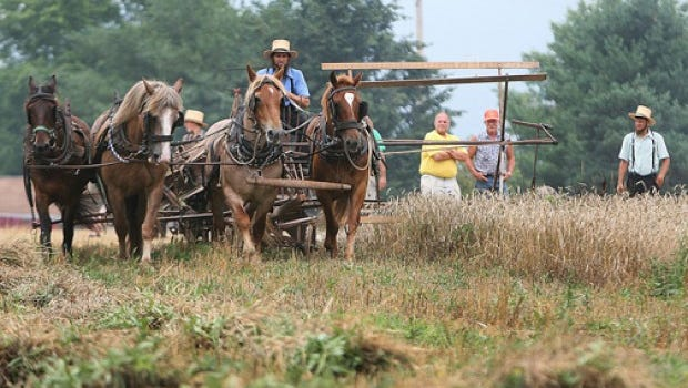 See how things used to be done at Newburg's Rural Life Festival.
