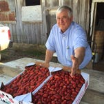 Sal Petito said inclement weather has slowed this year's Monroe crop.