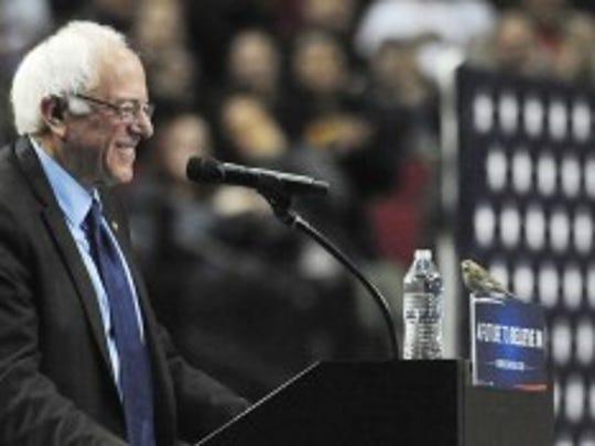 Bernie Sanders (AP Photo/Steve Dykes)