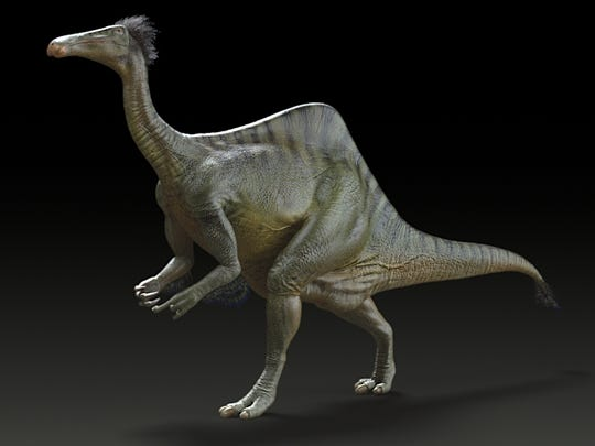 In 1965, paleontologists unearthed a ghastly pair of