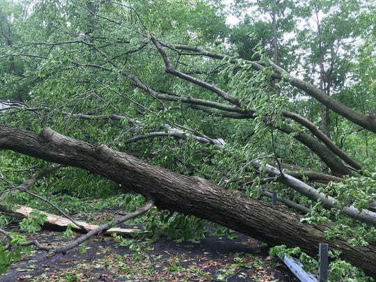 Several trees block Magnolia Drive in Somers May 16, 2018.