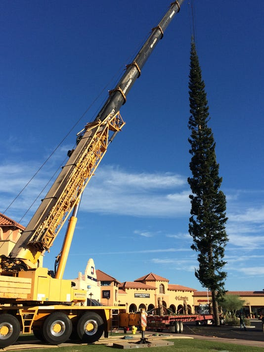 - 112-foot Christmas Tree Arrives In Arizona