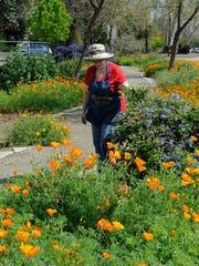 VTD0828 Master Gardener_3.jpg