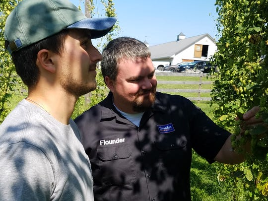 Anthony Verdi and Jeremy Verdi examine the hops being grown at Verdi's Sky High Hops in Readington.