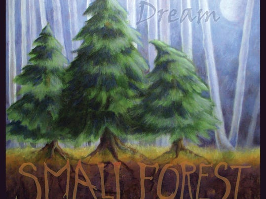 dcn 0722 Small Forest DREAM cover.jpg