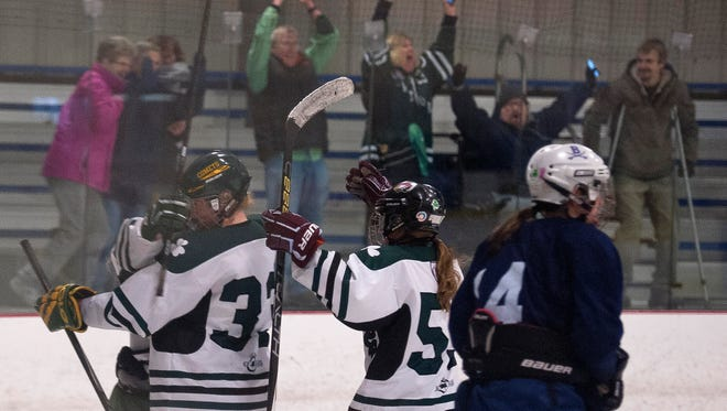 The Vermont Shamrocks and their fans react after Riley Yandow's overtime game-winner in the 2016 USA Hockey Tier II national championship game at Cairns Arena.