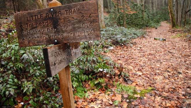After hiking approximately 2.4 miles along the Little River Trail from Elkmont in the Great Smoky Mountains National Park, hikers will reach an intersection with the Cucumber Gap Trail.