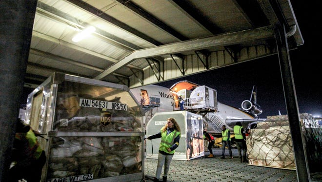 Workers unload containers filled with packages from one of dozens of airplanes lined up at UPS' Worldport.November 30, 2017