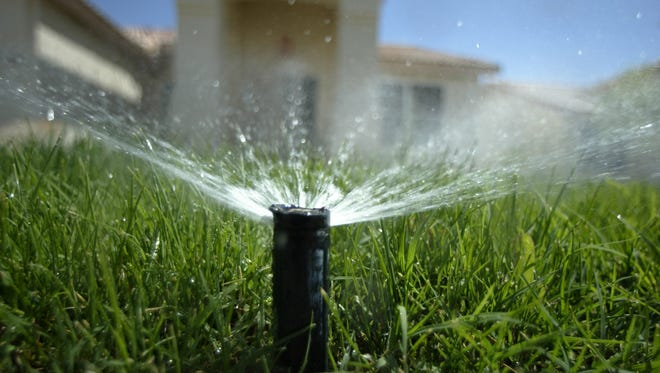 A sprinkler head pops up from the ground to water a lawn in Phoenix, Ariz.