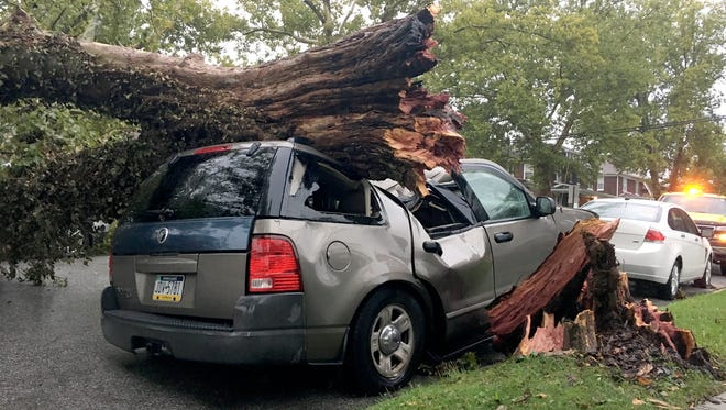 An SUV was crushed by a fallen tree on Midland Ave in Spring Garden Township following Tuesday's heavy storm.