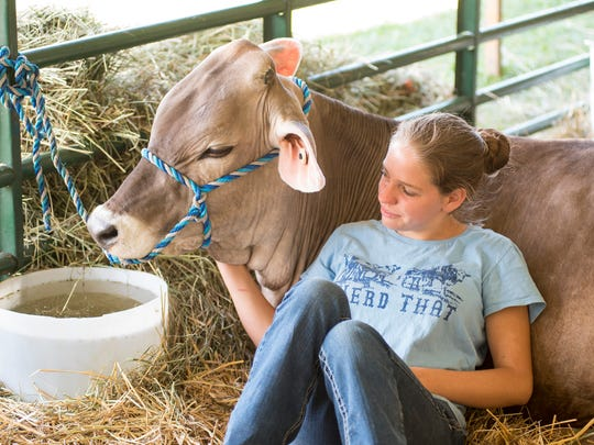 This year's St. Clair County 4-H and Youth Fair will be virtual due to the coronavirus pandemic.