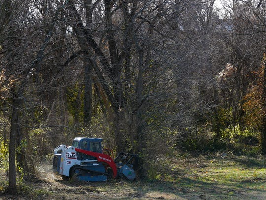 Using heavy machinery, crews clear brush and undergrowth