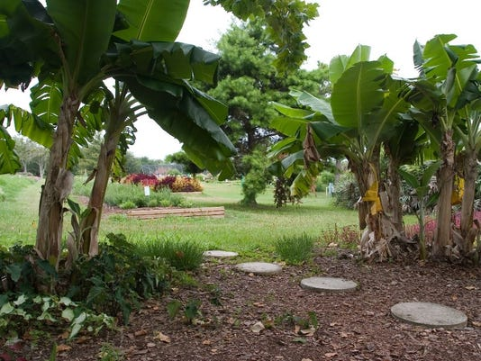 edible landscaping can change gardening outlook
