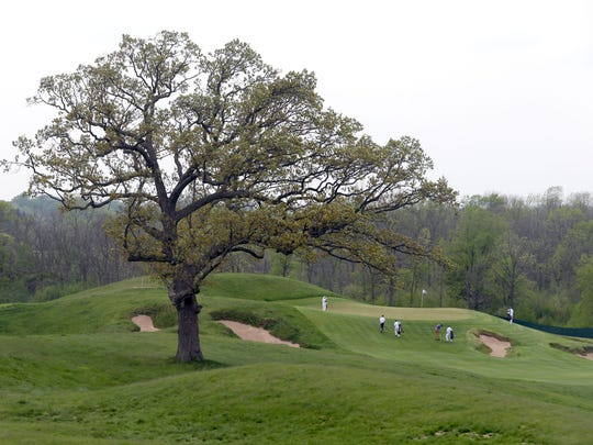A lone oak tree stands between the 15th and 16 holes