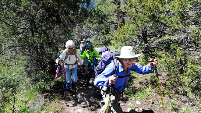 Trail guide Marcia Richards leads a group, organized through the Senior Center, up the Roaring Creek Trail in Poudre Canyon on Monday, June 9, 2014.