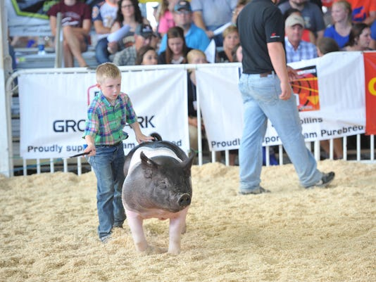 World Pork Expo Jr Show.jpg
