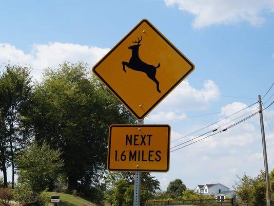 636446290987825851-Deer-crossing.jpg