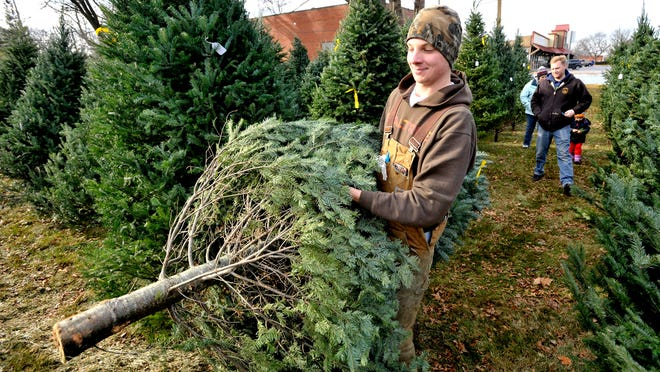 Employee Chris Fedoronko, left, 17, of Livonia, carries this Balsam fir to be fresh cut before Kevin DeVries, center, 34, his daughter, Michaela DeVries, 2, and wife and mother, Jennifer DeVries, 30, all of Wayne, buy the eight-foot-tall Christmas tree.