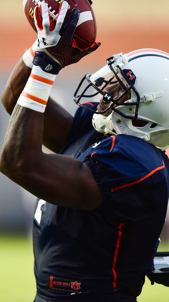 Auburn receiver D'haquille Williams should reap the