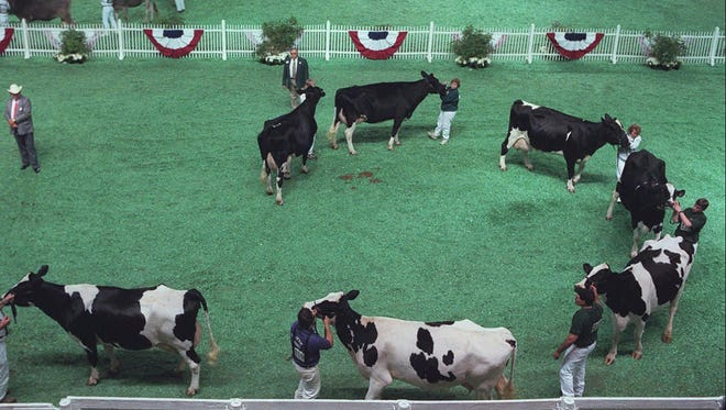 The North American International Livestock Exposition at the Kentucky Expo Center.