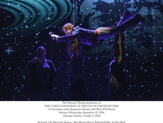 Curious Incident of the Dog in the Night-Time, The Ethel Barrymore Theatre
