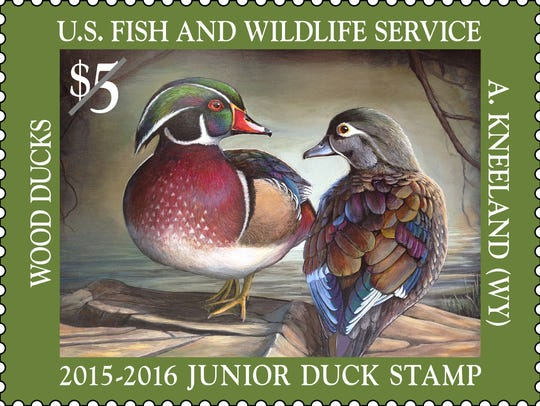 The Junior Duck Stamp judging comes to J.N. Ding Darling
