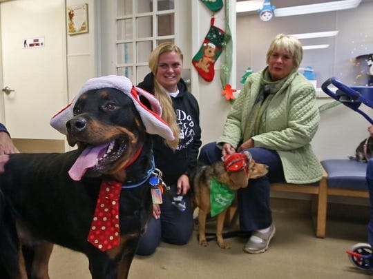 Some owners brought their animals in appropriate costumes