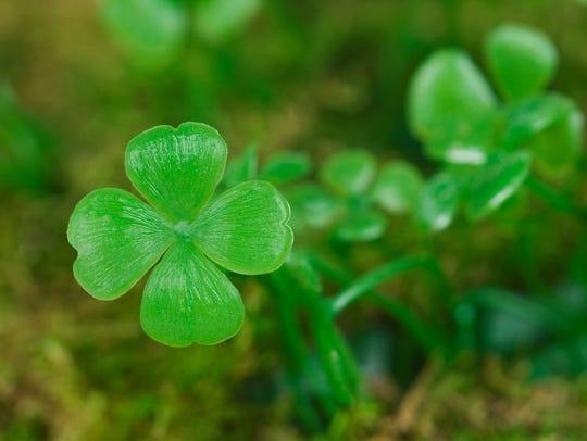 "The ""luck of the Irish,"" explained"