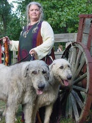 Irish wolfhounds will be show off their skills at the