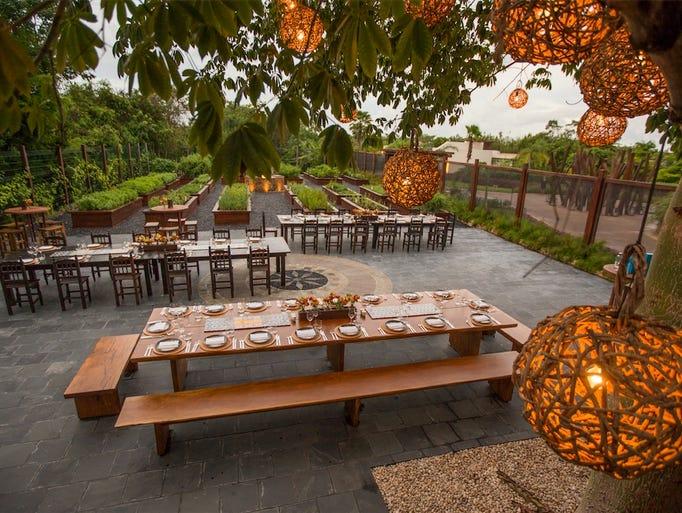 In Playa del Carmen, Mexico, La Ceiba Garden & Kitchen