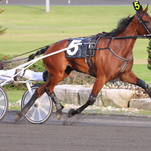 Bee a Magician is driven by Brian Sears.
