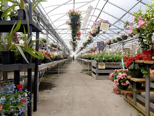 Alta Florist and Greenhouse near the corner of Home Road and Marion Avenue Road has a large number of annuals and perennials as well as gifts and collectibles.